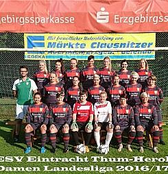 Landesliga-Team 2016/17